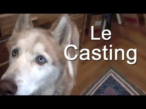 LE CASTING -