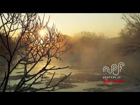 070 NPF SNOW_DEMO