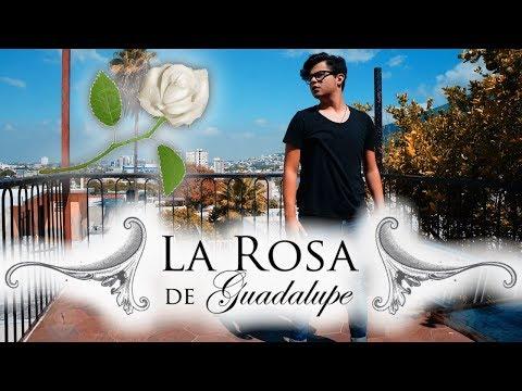 HOY EN LA ROSA DE GUADALUPE!
