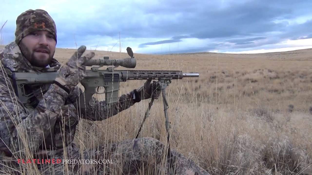 Eastern oregon coyote hunting morning mist flatlined for Oregon out of state fishing license