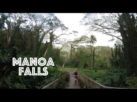 hawaii-adventures:-manoa-falls