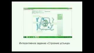 Использование электронных образовательных ресурсов ЭОР на уроках биологии