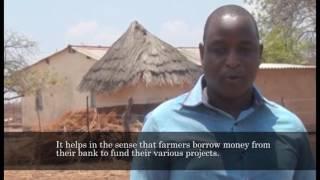 Small Holder farmers self financing in Zimbabwe