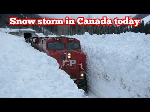 70 CM SNOW STORM TODAY IN ALBERTA CANADA 2020 | BLIZZARD CRAZY WEATHER | HORSE AND TRAIN IN SNOW