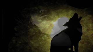 Under My Skin Book Trailer