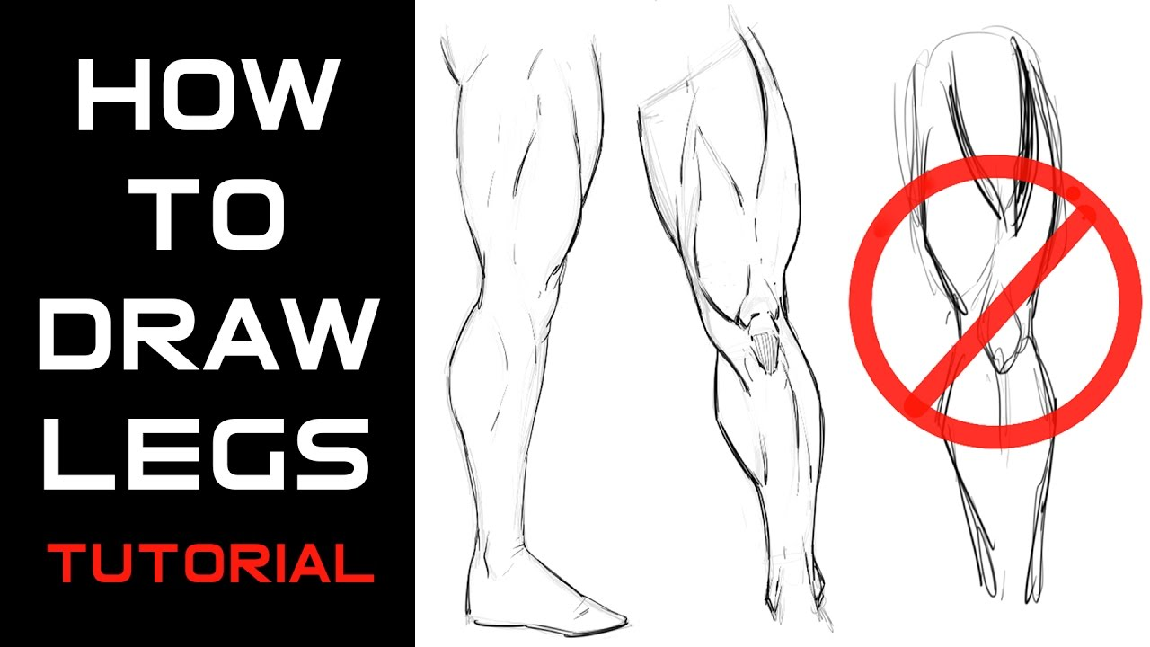 It's just a graphic of Universal Muscle Leg Drawing