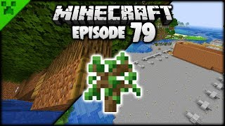 The Minecraft Tree Farm MEGA Project! | Python's World (Minecraft Survival Let's Play) | Episode 79