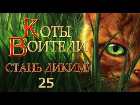 Огнезвёзд   Коты-воители вики   Fandom   360x480