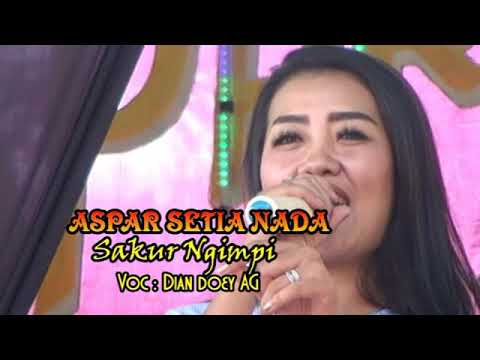 Aspar Setia Nada / Sakur Ngimpi / Dian Doey AG