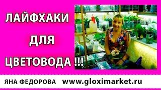 ЛАЙФХАКИ ДЛЯ ЦВЕТОВОДА !!! Выпуск №2
