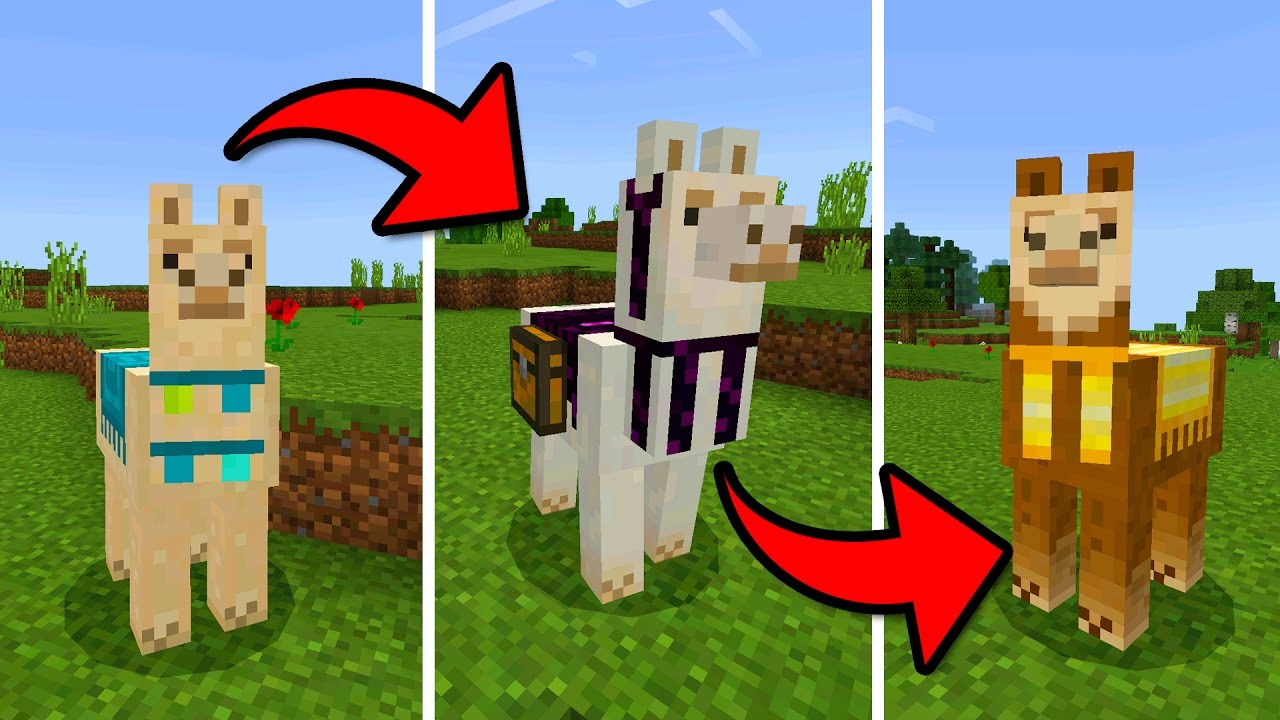 MCPE 122.122 UPDATE!!! - How to Tame & Decorate a Llama - (Pocket Edition)