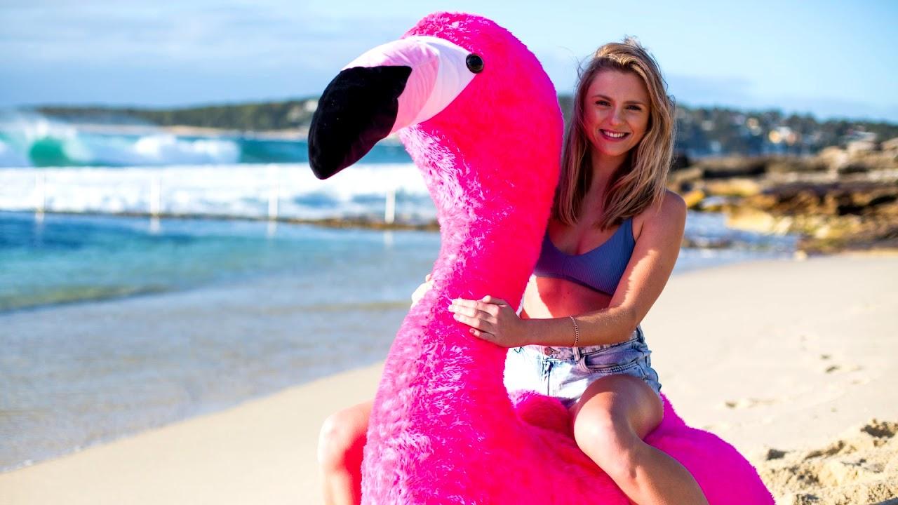 The Chillingo The Inflatable Plush Flamingo Kickstarter Video
