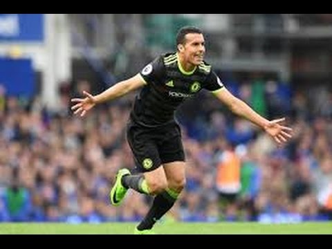 Pedro Rodríguez Goal vs Everton - Premier League ( HD 720p )
