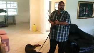 Fort Lauderdale Florida Dog Training: Smart Start Puppies