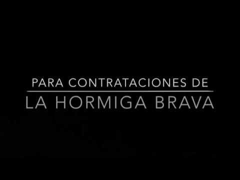 La Hormiga Brava Ft. John Jairo Perez (Official V�deo lyrics) La Mujer ideal