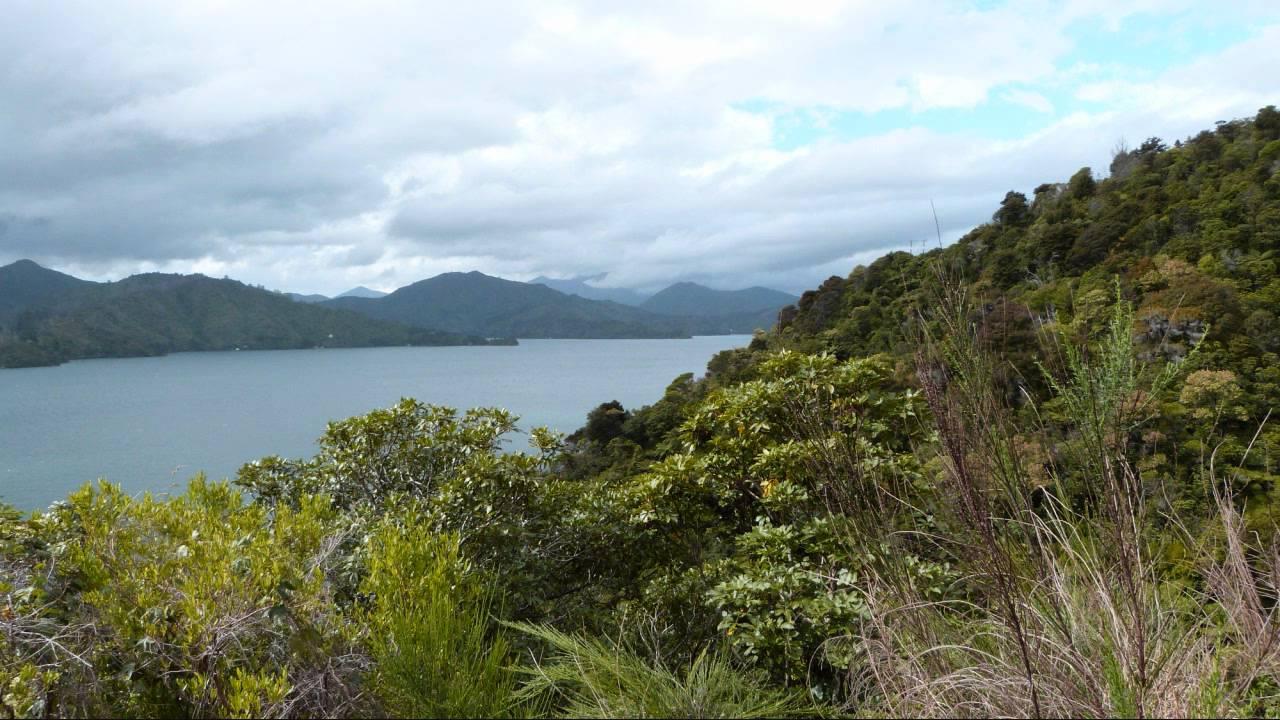 Super Nouvelle-Zélande - Paysages de l'île du Sud - YouTube AF33