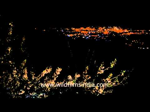 Dehradun city, with twinkling lights, as seen from Landour