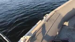 Риболовля на Ангарі, с. Богучаны