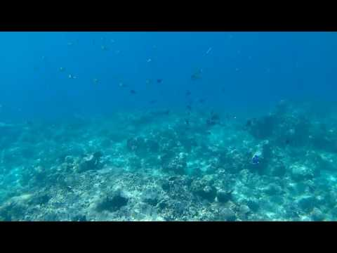 Brica BPro5 AE2S-Snorkeling in Gili Air (in front of Sunrise Resort)