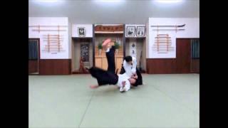 スロー映像04(腕絡み投げ)slow motion aikido