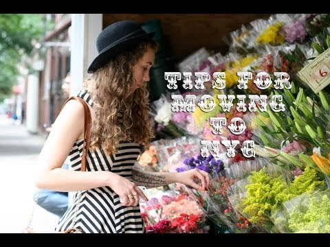 Things I learned living in New York City | Paulie Antiques Show