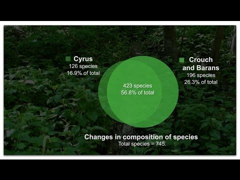 Floristic study: Decline in College Woods
