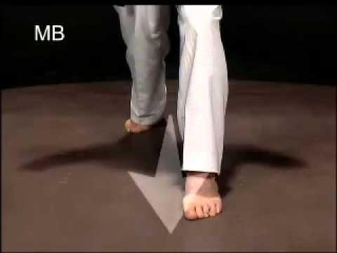 Descripción de las posiciones de Taekwondo Sogui o stance