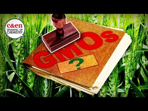 How GMOs are regulated… or not—Speaking of Chemistry