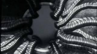 Whitehouse x Jeremy Solterbeck - I