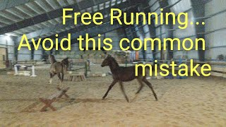 Free running tips with Kalila, Fairly and Secret