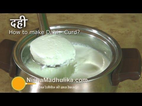 Make Dahi or Curd at home | दही कैसे जमायें । How to make thick curd recipe