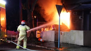 Police hunt arsonist after several fires deliberately lit in Sydney