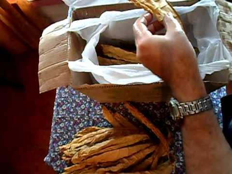 №25 Табак  Ферментация табака  Увлажнение листьев