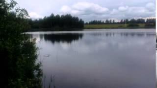 Озеро. Новая Рига. Стариково