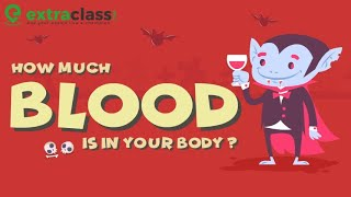 How much blood is in the human body? | Extraclass