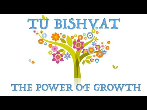 Tu Bishvat - The power of growth - Rabbi Alon Anava