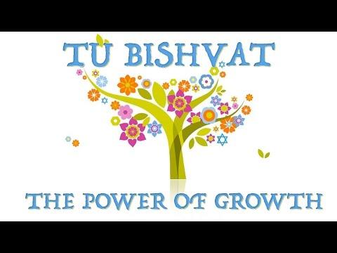 Tu Bishvat - The power of growth - Rabbi Alon Anava