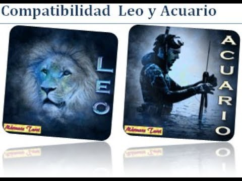 acuario y leo son compatibles en el amor