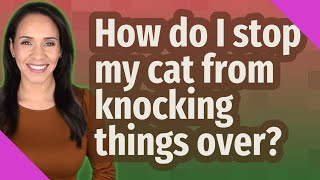 How do I stop my cat from knocking things over?
