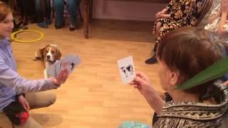 Рон показывает карточные фокусы