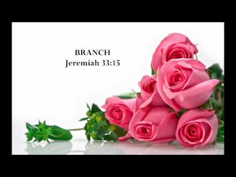 The Names Of God (with Bible Verses) - Part 2