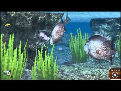 Reel Fishing: Master's Challenge Vita Gameplay