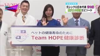 獣医師団体『Team HOPE』による「ペットの健康寿命を考える」プレスセミ...