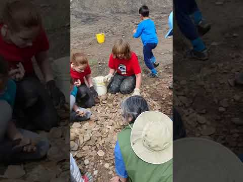 ESCONI Field Trip: Braceville, IL May 2018 - Mazon Creek Fossils