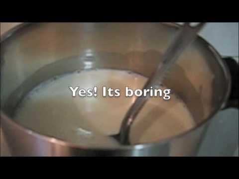 SCD 24-hour Yogurt (Commercial Starter)