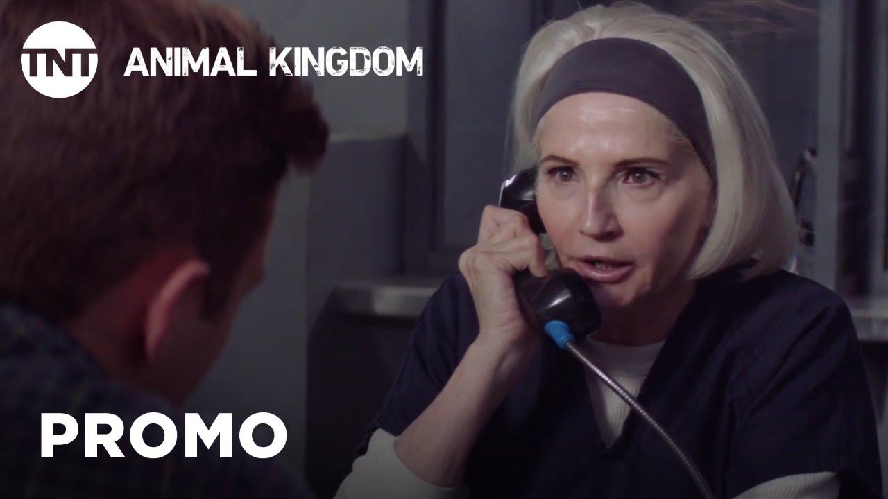 Download Animal Kingdom: Prey - Season 3, Ep. 5 [PROMO]   TNT
