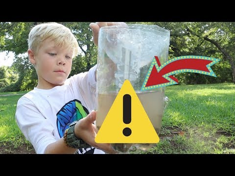 CRAZY Results with a 1 DOLLAR Homemade Fish Trap!
