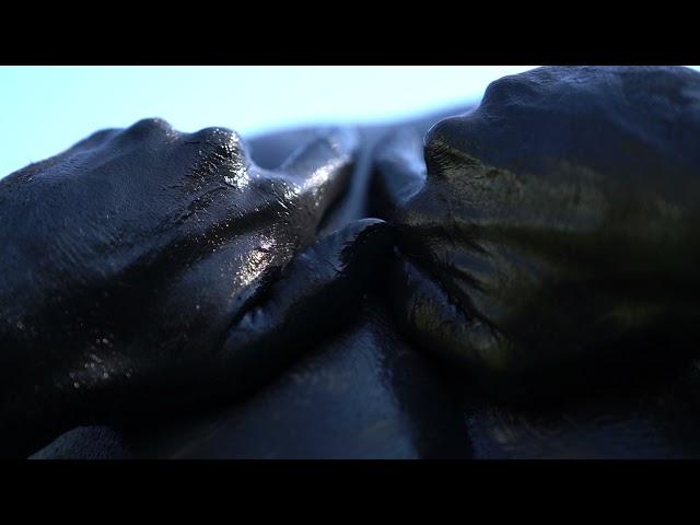 Erdve - Pragulos (Official Video) 2021