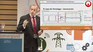 Control inteligente de redes térmicas de biomasa thumbnail