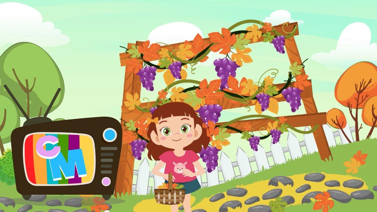 A ruginit frunza din vii - Clopotelul Magic - cantece pentru copii